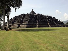 Village life experience and Borobudur tour - Private
