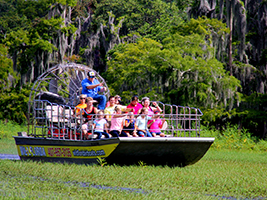 Wild About Florida with Transport