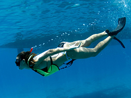 Ocean Playground Afternoon Snorkel