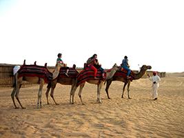 The adventure of the desert