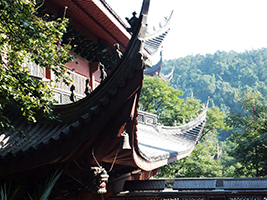 Private Full Day Hangzhou Tour in English: West Lake, Lingyin Temple and Six Harmonies Pagoda