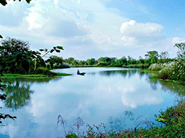 Private full Day Hangzhou Tour in English: Xixi Wetland and West Lake