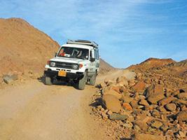 Super Safari Adventure