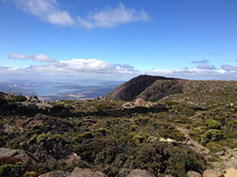 Mt Wellington - Morning
