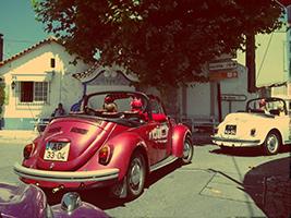 Beetle Ride with Cellars Visit