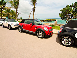 Full Day Mini Coopers Excursion