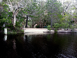 Noosa River Everglades BBQ Lunch Cruise