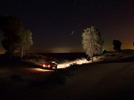 Private Night Safari and Astronomy Tour