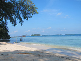 Full Day Sepa Island