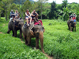 Private Half Day Tour Lahu, Karen Hilltribes, Elephant Ride and Boat Trip
