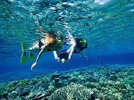 Green Island Snorkel & Glass Bottom Boat