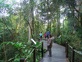2 Day Combo - Green Island and Kuranda