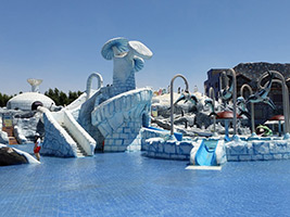 Iceland Water Park Private Tour with Transport