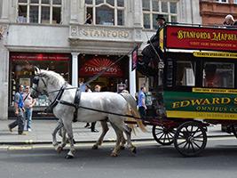 Horse Drawn Tour of London