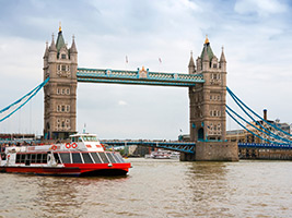 Circular Sightseeing Cruise on Thames from Bankside