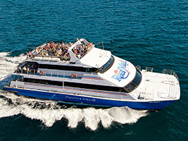 Great Barrier Reef Cruise with Transfer