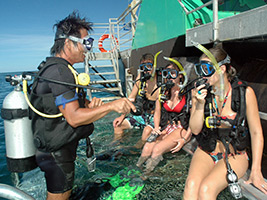 Marine World Outer Great Barrier Reef with 1 x Introductory Scuba Dive