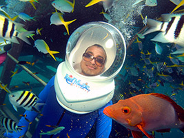 Great Barrier Reef with Reef Magic Cruises with 1 x Helmet Dive