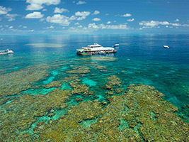 Great Barrier Reef with Reef Magic Cruises with Guided Snorkel Safari