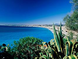 Italian Riviera Private Day Trip
