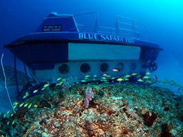 Blue Safari - Submarine Trip