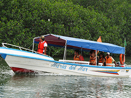 Puerto del Morro Tour, Dolphin Watching and Birth Island