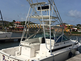 Private Half Day Fishing Charter
