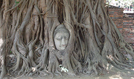 Full Day Discover Ancient Ayutthaya