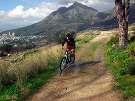 Half Day Mountain Biking Adventure