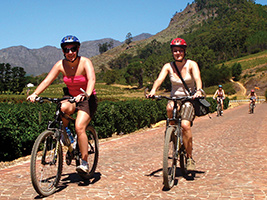 Cape Point Cycle & Winelands Adventure