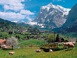 """2 Day / 1 Night Tour - """"Jewels of the Alps"""" from Zurich"""