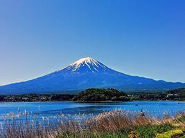 Mt. Fuji and Lake Kawaguchi 1 Day Bus Tour