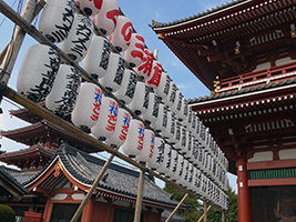 Amazing Tokyo - Sightseeing and Shopping