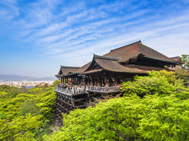 Kyoto A: Day Tour - Departure from Kyoto