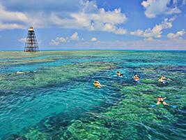 Key West Tour with Catamaran and Snorkel Trip