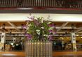Imperial Mae Hong Son Resort, Mae Hong Son