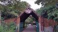 Sarova Mara Game Lodge