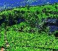Royal Hills Nuwara Eliya