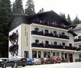 Hotel Cabana Schiorilor Predeal